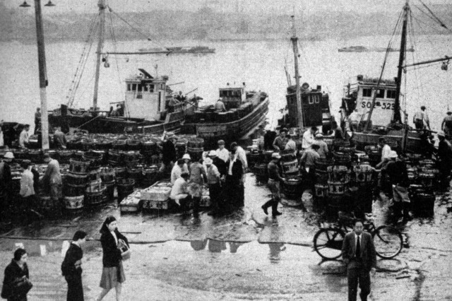 Japan's fisheries, operated by newly formed cooperatives, are achieving pre-war levels of production.