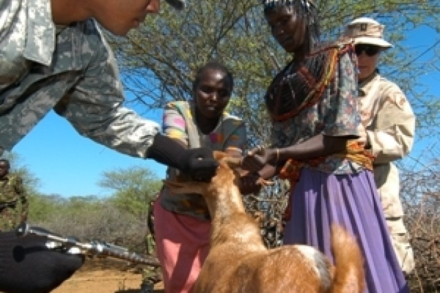 CHEMERIL, Kenya -- August 15, 2006 -- Guam Army National Guard Specialist Ignacio Rosario of Chalanpago Guam immunizes a goat with the help of local Pokot herders. As part of Exercise Natural Fire, over 2000 sheep and goats were vaccinated against Sheep Pox and Pleural Pneumonia at a Veterinary Civil Assistance Project (VETCAP) operated by U.S., Kenyan, Tanzanian and Ugandan veterinarians and doctors.
