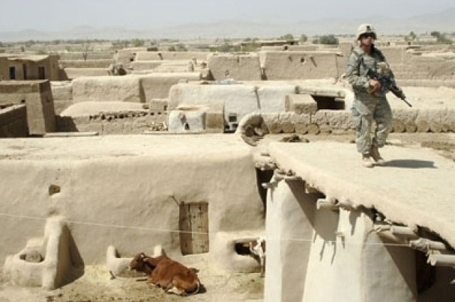 A Soldier from Company D, 2nd Battalion, 4th Infantry Regiment, 10th Mountain Division searches for weapons caches in the village of Alizai in Ghazni Province, Afghanistan.