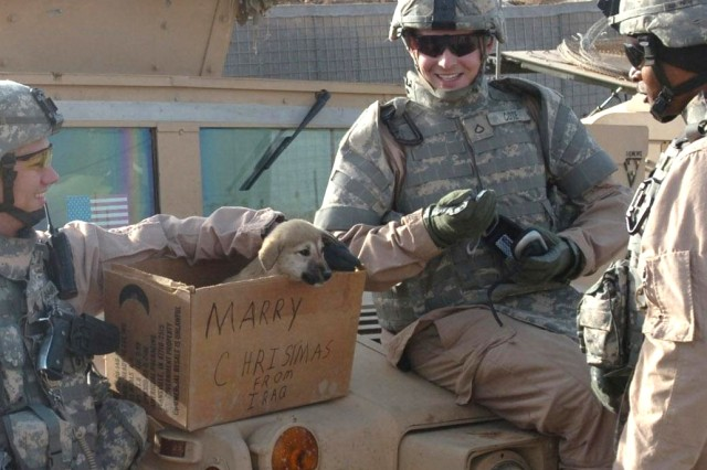 Sgt. Christopher Calahan (left), a driver; Pfc. Seth Cote, a gunner; and Spc. Harrold Waterman, driver, took time to joke on Christmas day, creating an impromptu present with one of the puppies at an observation post near Camp Taji, Iraq. The misspelled word was part of the humor. The Soldiers are with the 1st Cavalry Division.