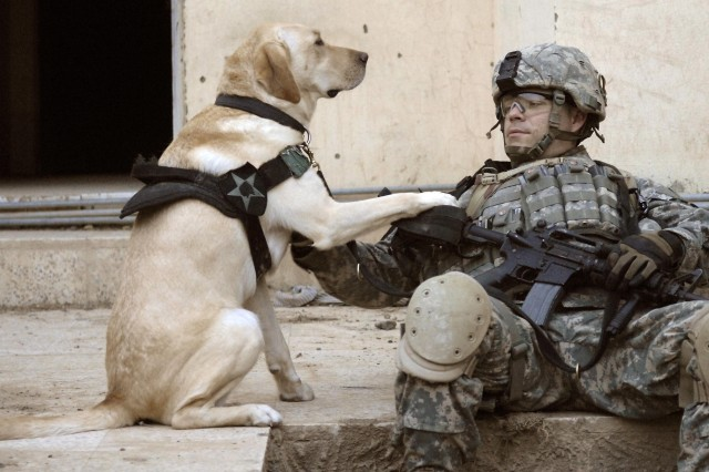 Staff Sgt. Kevin Reese and Grek share a bonding experience at the start of the operation.