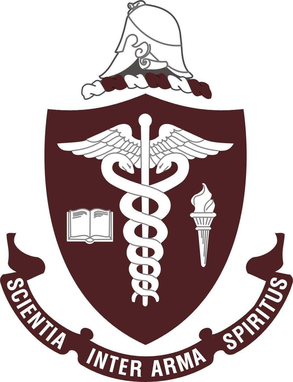 Nursing Coat of Arms: Cultural Competence, Communication, Empathy, Teamwork, and Pride