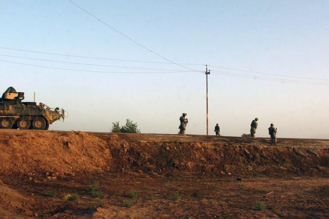 Looking for Insurgents in Taji