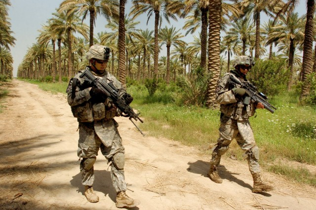 Soldiers search a palm grove.