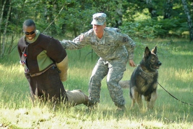"Sgt. Krystal Darcey of the Miesau Kennels, and her dog, Donna, apprehend a ""suspect,"" role-played by Sgt. Richard Guillory, during the scouting event at the USAREUR Military Working Dog Competition in Hanau June 8."