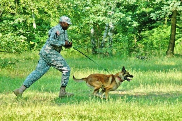 Staff Sgt. Clinton Darrisaw, a handler with Hanau's 230th MP Co., and his dog Rex II chase a suspect during the USAREUR Military Working Dog Competition in Hanau June 8.