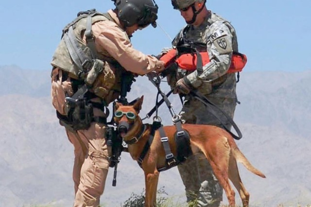 """1st Sgt. Dean Bissey hooks the hoist harness to Staff Sgt. Michael Hile and his military working dog """"Rronnie"""" (spelled with two """"Rs"""")."""