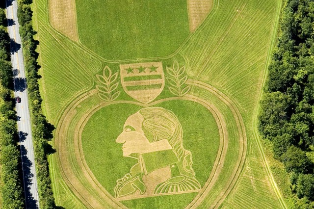Field artist Roger Baker mowed this representation of a modern Purple Heart Medal into a field in Orange County, N.Y.