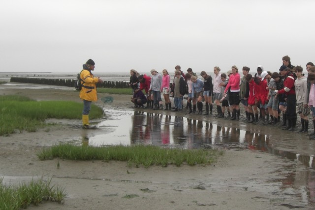 """An island guide explains marine life during a """"watterwanderung,"""" one of several nature tours taken by campers of an Installation Management Command-Europe island adventure for youth."""