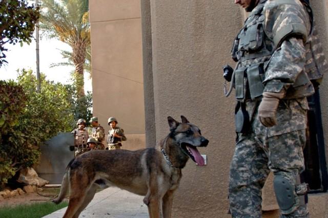 Zasko is on patrol in western Baghdad.