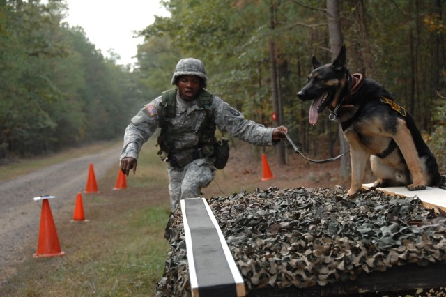 Fort Belvoir's Staff Sgt. Raymond Nelson guides his dog, Brix, up an obstacle during the Mystery Event of the four-day 2007 U.S. Army Training and Doctrine Command Military Working Dog Warrior Police Challenge Oct. 19.