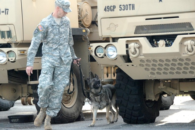 Sgt. Jason Bird from Fort Lee, Va., works with his military working dog, Kondi, to sniff out narcotics hidden among rows of vehicles during the Explosives and Narcotics Detection (Vehicles) event Oct. 16 at the 2007 TRADOC Military Working Dog Warrior Police Challenge.