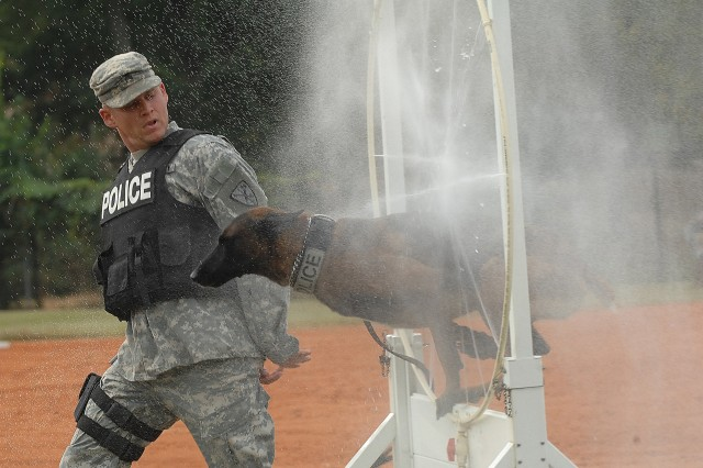 Fort Riley's Sgt. William Cotner guides his dog through the water obstacle during the Handler Protection and Tactical Obedience event of the four-day 2007 TRADOC Military Working Dog Warrior Police Challenge.