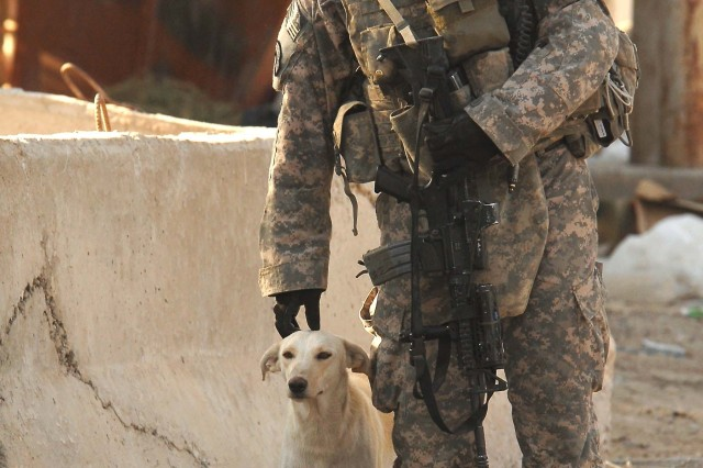 Sgt. Justin Silverthorn, from Company C, 4th Battalion, 9th Infantry Regiment, 4th Stryker Brigade Combat Team, 2nd Infantry Division, takes a break to pet a stray dog at a U.S. and Iraqi Army security checkpoint in Tarmiyah, Sept. 25.