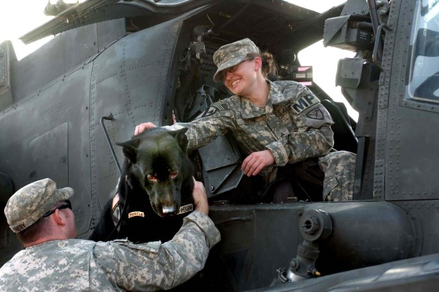 "Sgt. Jodi Stone holds her dog ""Staff Sgt. Bengo"" steady as Sgt. Matthew Kniery, a K-9 handler, assists her in getting out of an AH-64D Apache helicopter that landed at Tomahawk Village, Camp Taji, Iraq, for Sgt. Stone's reenlistment"