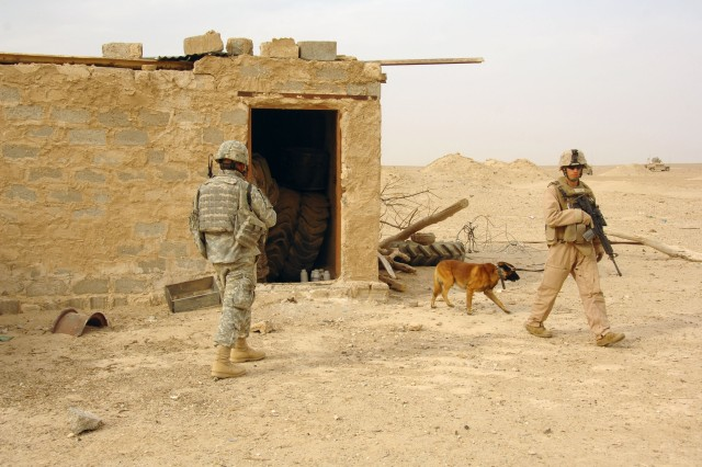 A Soldier and Marine, both attached to the 3rd Marine Division, and their military working dog, clear a house in Tharthar, Iraq, Oct. 7.