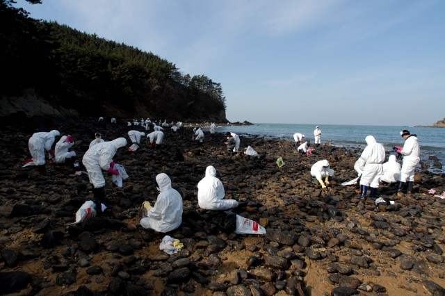 Soldiers and Airmen from Kunsan Air Base and Korean nationals clean rocks after crude oil spilled from a crane barge Dec. 7 and washed on shore. A month later, volunteers continue with the cleanup.