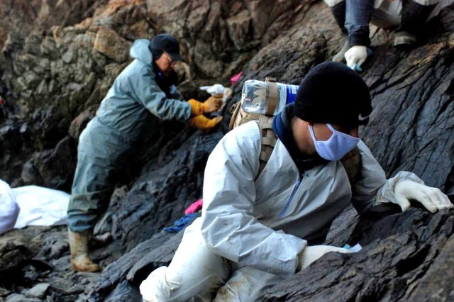 Pvt. Vincent Zoccolillo, Co. E, 1st Bn., 72nd Armor Regt., works alongside Korean nationals while cleaning up the oil spill at Mallipo Beach, Taean, Jan. 27.