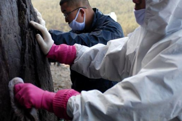 Pfc. Kim, Sung J. and Pvt. Ahn, Jung H., Co. E, 1st Bn., 72nd Armor Regt., are dressed in HAZMAT equipment and face masks to aid in cleaning the oil off a rock wall.