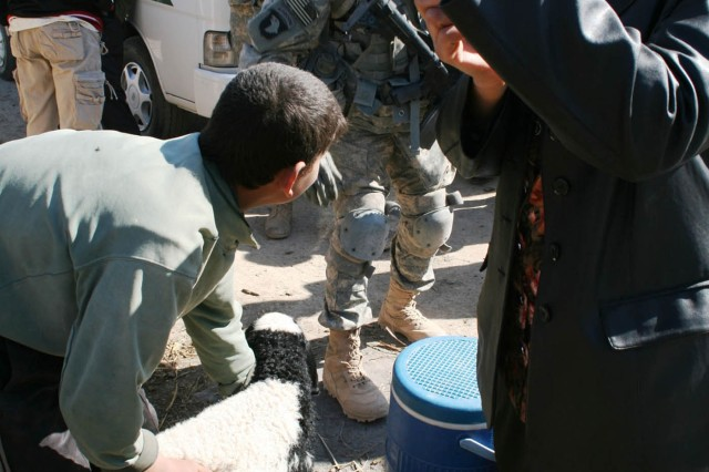 Iraqi Army, Rakkasans organize veterinary visit in Yusufiyah