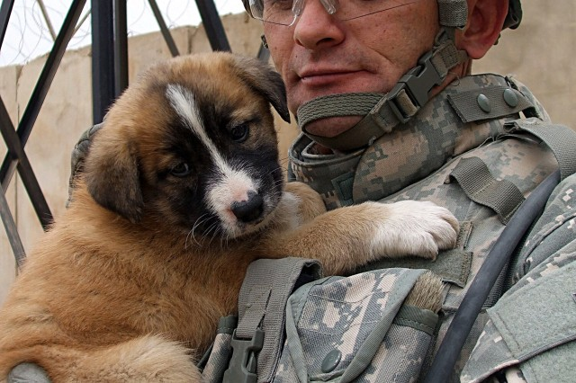 Sgt. Massey, from the 3rd Infantry Division, holds a puppy adopted by the Musayyib Iraqi Police Station.