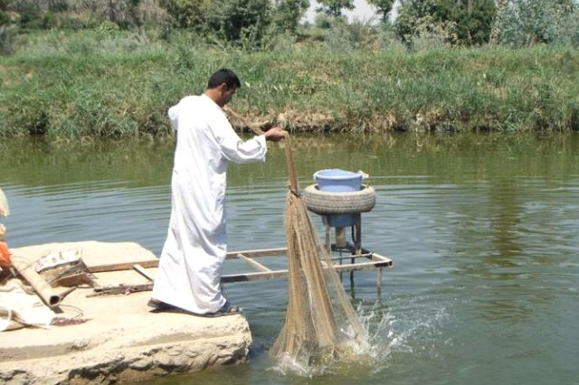 A worker on Abdul Jabar Abid Kasim's fish farm in al-Buaytha brings in a sample haul April 26. A micro grant from ePRT Baghdad-7 allowed Kasim to improve and expand his operation.