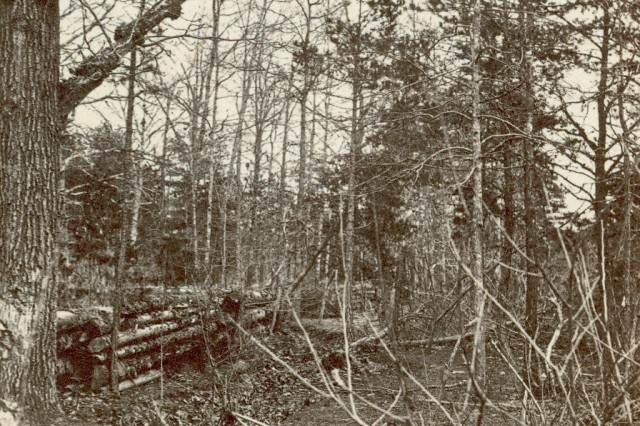 Confederate entrenchments in the woods near the Spotswood House on the Wilderness battlefield, (Massachusetts MOLLUS Photograph Collection).
