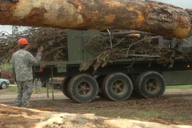 Ground Guiding the Timber Delivery