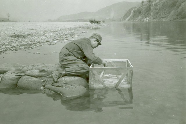 A laboratory technician of the 4th Signal Battalion, U.S. Eighth Army, washes prints in a river in Korea, using a fine weave screen basket.  The sand bag pier was constructed in order to reach water of sufficient depth and rate of flow to wash prints properly.  No other means of washing prints was been available;18 April 1951(Korean War Signal Corps Collection).