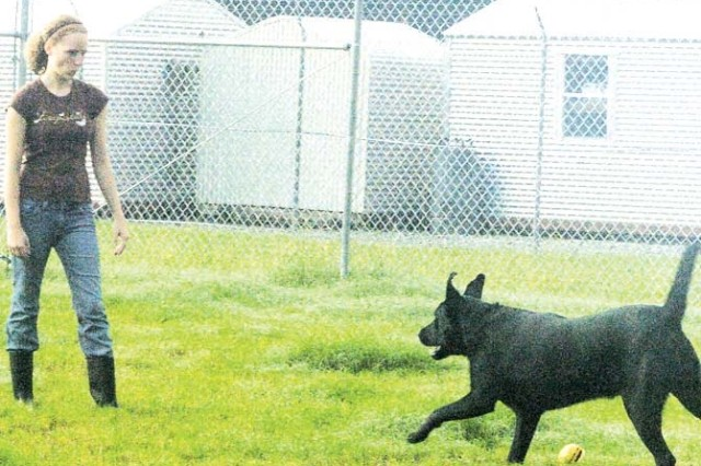 "Johanna Hayes, Animal Care Taker for Fort Stewart's Pet Boarding Facility gives ""Bear"" some exercise time, Aug. 26. The DMWR facility provides boarding care for vaccinated dogs and cats."