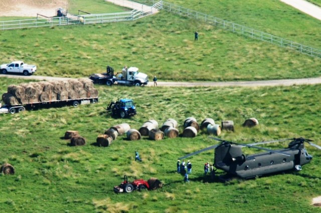 Ranchers lay out hay for Chinook