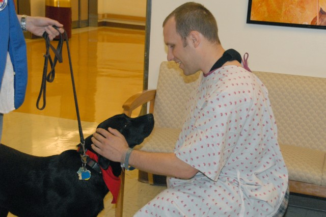 Patients make furry friends at Walter Reed