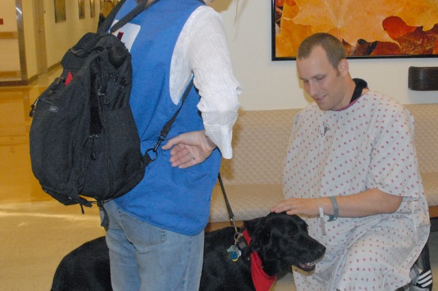 2nd Lt. Robert Holiday plays with Rocky while owner Pam Dooley looks on. Rocky visits Walter Reed Army Medical Center twice a month as part of a Red Cross dog therapy group.
