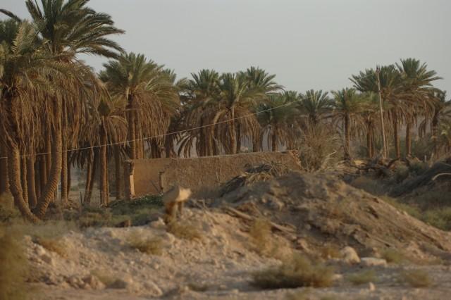 History meets nature at Al Asad
