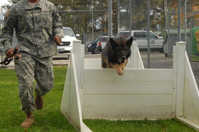 Staff Sgt. Thomas Moreno of the 554th Military Police Company puts Brando, a 7-year old German shepherd, through the paces at an obstacle course for military working dogs at U.S. Army Garrison Stuttgart, Germany. The course, located at the MWD Section Kennel near Panzer Kaserne, is one of the training areas MWD handlers use to keep their dogs fit and ready to deploy.