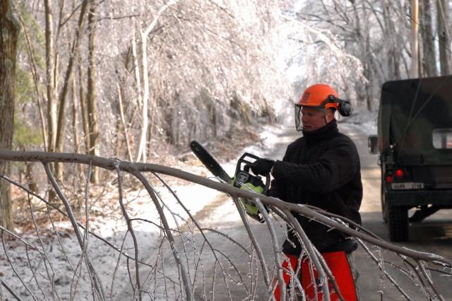Cutting fallen trees