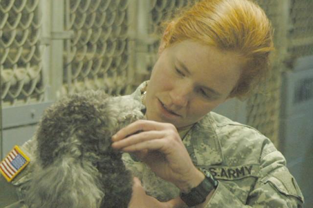 Capt. Erika Stapp, Fort Polk veterinarian, examines one of the dogs housed by the Fort Polk stray animal program.