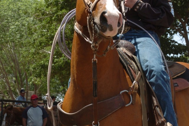 Spc. Jake Lowery and his grandmother's horse, Zipper, survey the competition while awaiting their turn in a Troy Shelley Affiliate team roping event, May 10, at Denny Calhoun Arena in Las Cruces, N.M.