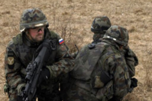 Guard, Reserve Soldiers train at Joint Multinational Readiness Center for Kosovo mission