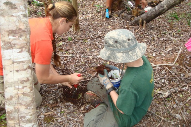 MAKUA, Hawaii - Oahu Army National Resource Program staff member Colleen Moriarty and a Scout volunteer plant a koa seedling. Life Scouts and their volunteers succeeded in planting 300 koa trees in Kahanahaiki Forest.