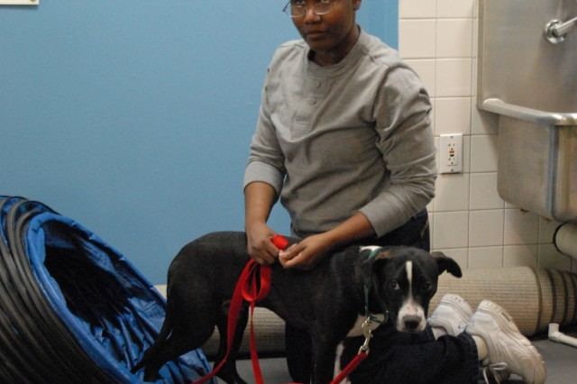 Staff Sgt. Ladeaner Williams coaxes a 4-month-old Pitt Bull Terrier mix named Brody out of the dog tunnel during her internship to learn how to train dogs at the Washington Humane Society.