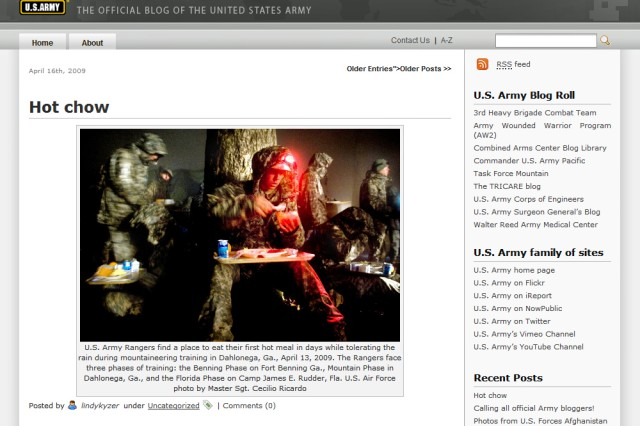 "Screen shot of the ""Army Live"" blog portal"