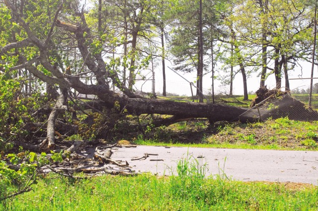 This tree, uprooted in the storm Friday, broke a fence at Range ControlAca,!a,,cs headquarters on Harmony Church.