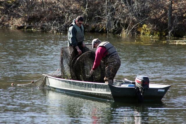 Surveying fish populations