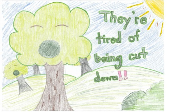 Third Place winner of the poster contest for AFNROTH International  School (Grade M2) is Shari St. John.