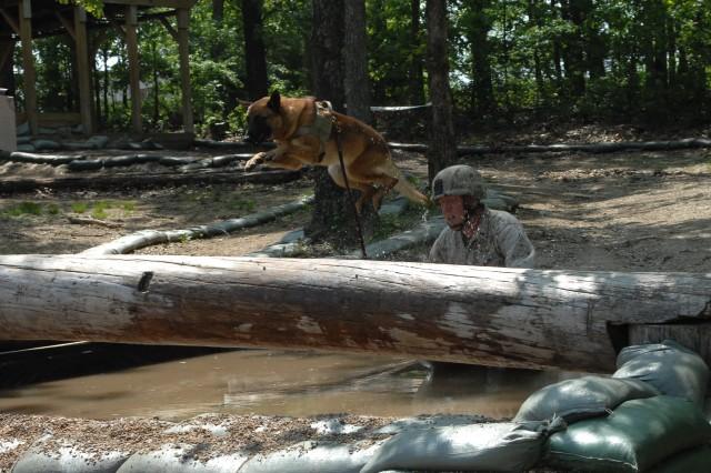 Military Working Dog Warrior Police Challenge