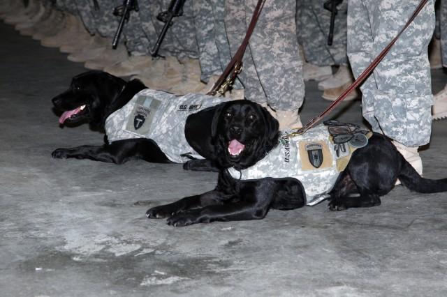 Unique Soldiers help alleviate combat stress