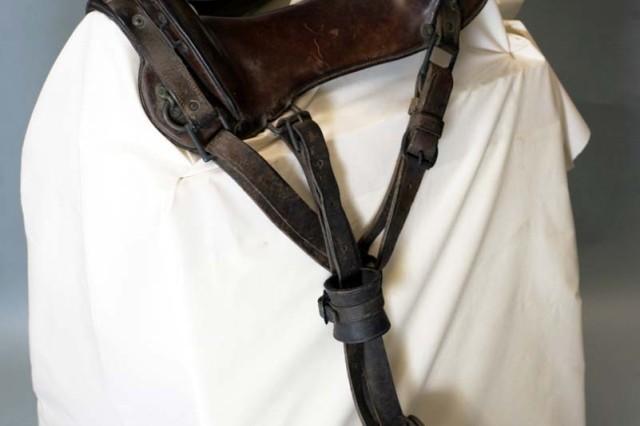 McClellan saddle.