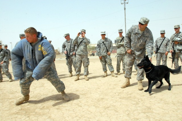 Pvt. Jonathan Davis, from Raiford, Fla., and a mechanic with 15th Brigade Support Battalion, 2nd Brigade Combat Team, 1st Cavalry Division, sprints away from Buli, a military police working dog during a demonstration at Forward Operating Base Warrior in Kirkuk, Iraq, Aug. 1. The demonstration was to not only entertain Soldiers but to educate leaders on the capabilities of the military working dog.