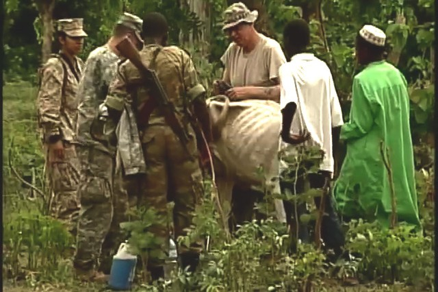 Soldiers care for animals in Africa